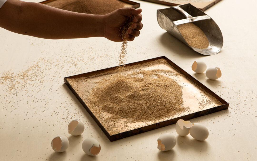 CArrelé – The Calcium Brick Collection – Inde.Awards